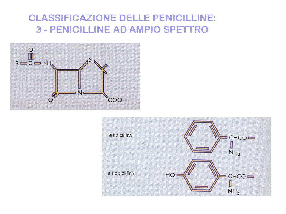 CLASSIFICAZIONE DELLE PENICILLINE: 3 - PENICILLINE AD AMPIO SPETTRO