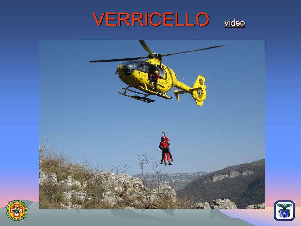 VERRICELLO video