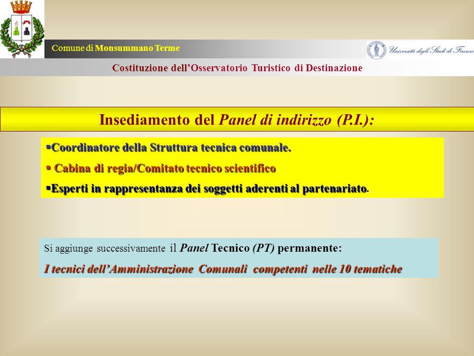 Insediamento del Panel di indirizzo (P.I.):