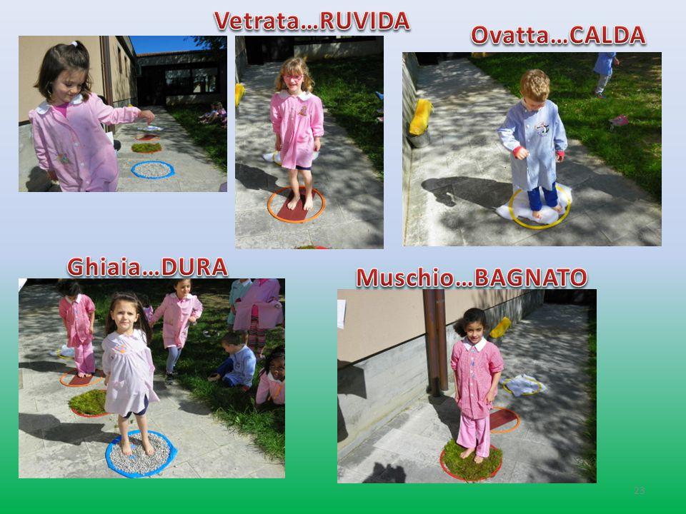 Vetrata…RUVIDA Ovatta…CALDA Ghiaia…DURA Muschio…BAGNATO