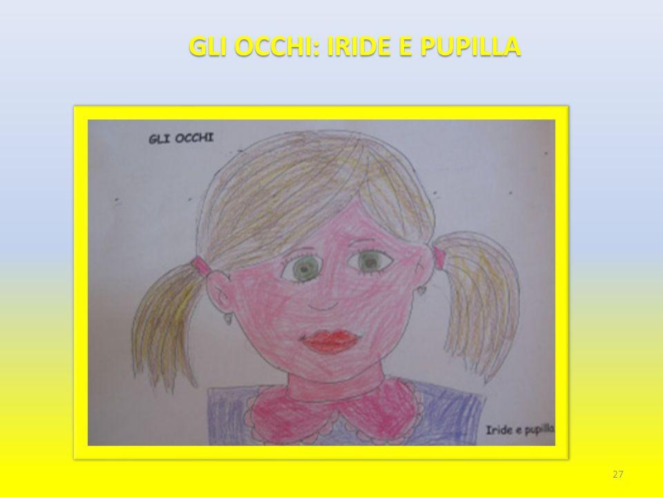 GLI OCCHI: IRIDE E PUPILLA