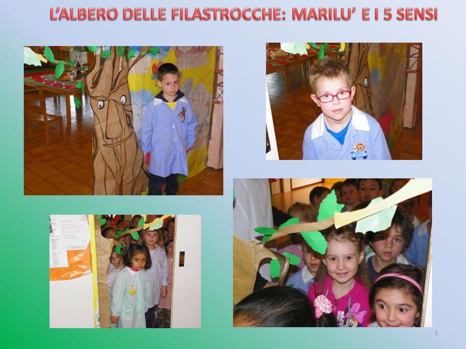 L'ALBERO DELLE FILASTROCCHE: MARILU' E I 5 SENSI