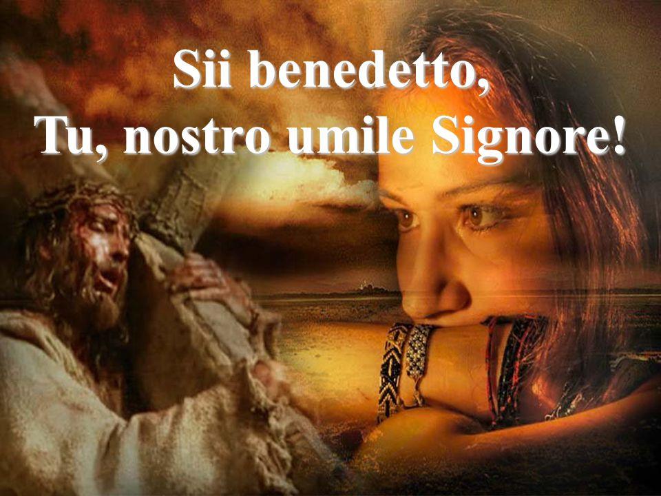 Tu, nostro umile Signore!