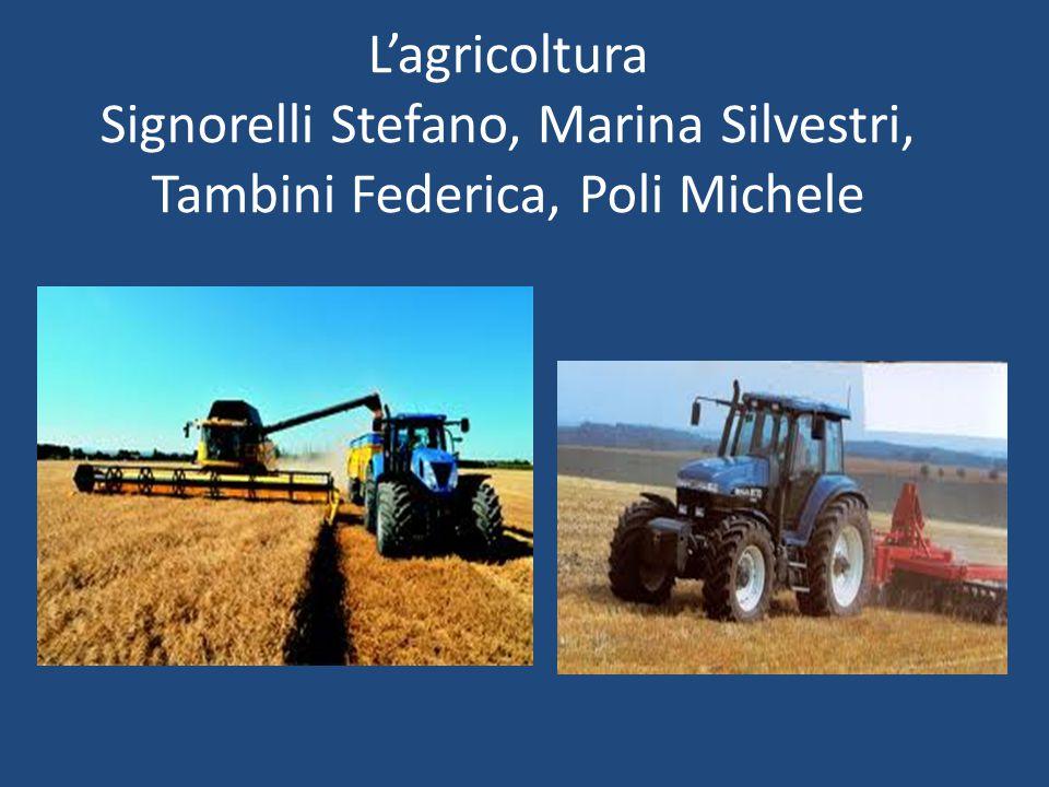 L'agricoltura Signorelli Stefano, Marina Silvestri, Tambini Federica, Poli Michele