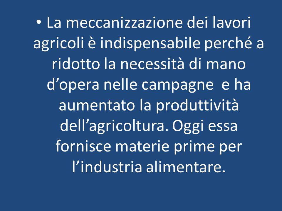 La meccanizzazione dei lavori agricoli è indispensabile perché a ridotto la necessità di mano d'opera nelle campagne e ha aumentato la produttività dell'agricoltura.