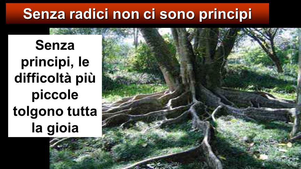 Senza radici non ci sono principi