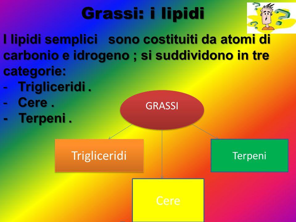 Grassi: i lipidi I lipidi semplici sono costituiti da atomi di carbonio e idrogeno ; si suddividono in tre categorie: