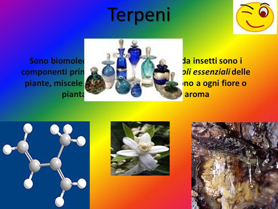 Terpeni
