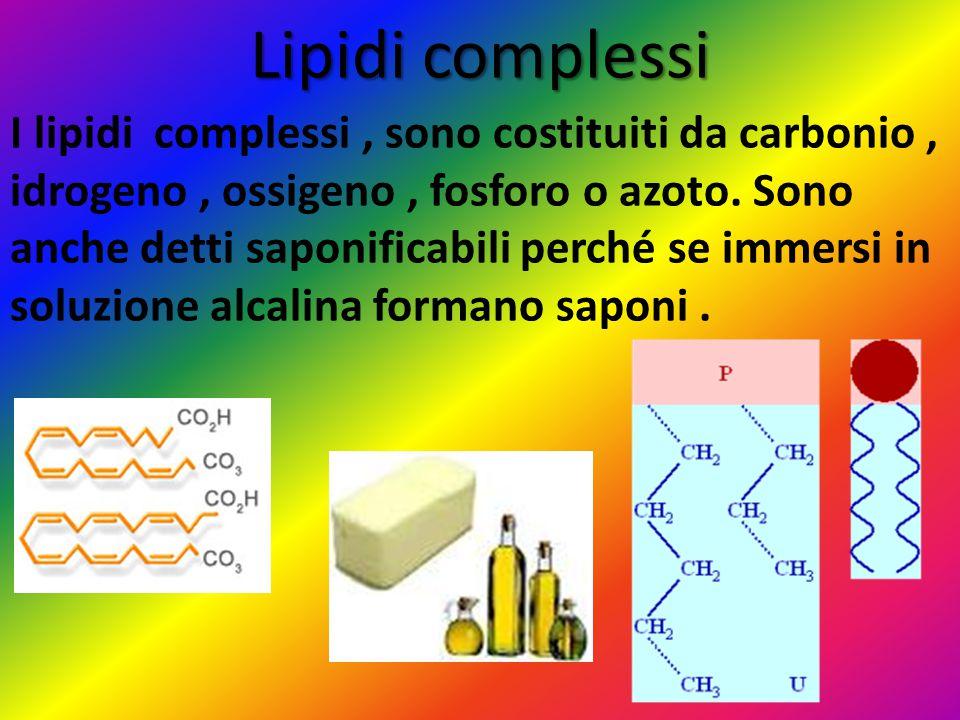 Lipidi complessi