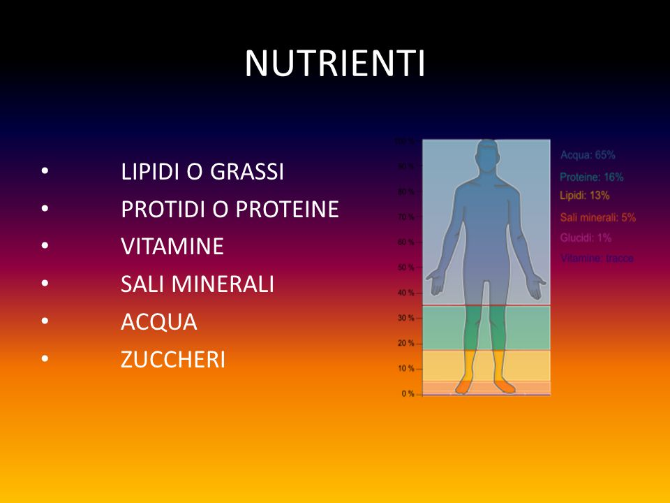 NUTRIENTI LIPIDI O GRASSI PROTIDI O PROTEINE VITAMINE SALI MINERALI