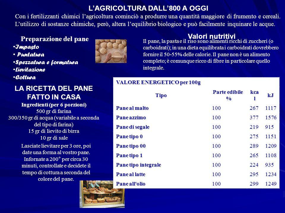 L'AGRICOLTURA DALL'800 A OGGI