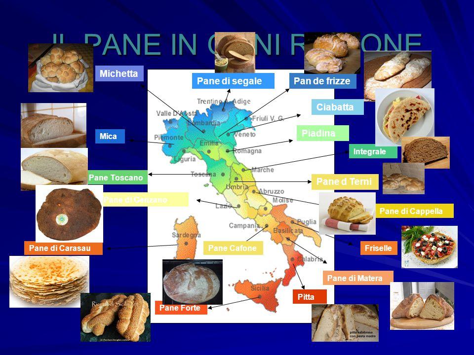 IL PANE IN OGNI REGIONE Michetta Pane di segale Pan de frizze Ciabatta