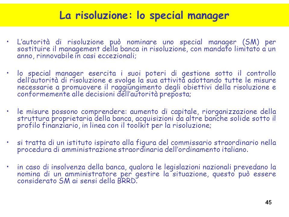 La risoluzione: lo special manager