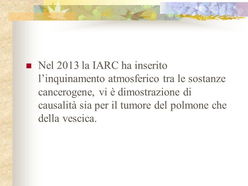 Nel 2013 la IARC ha inserito l'inquinamento atmosferico tra le sostanze cancerogene, vi è dimostrazione di causalità sia per il tumore del polmone che della vescica.
