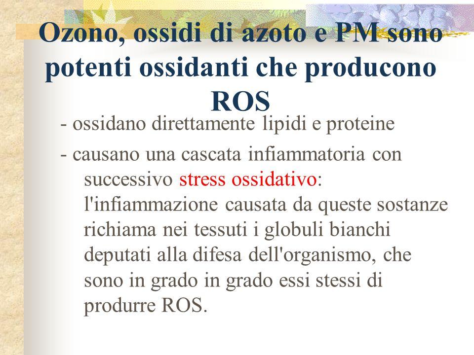 Ozono, ossidi di azoto e PM sono potenti ossidanti che producono ROS