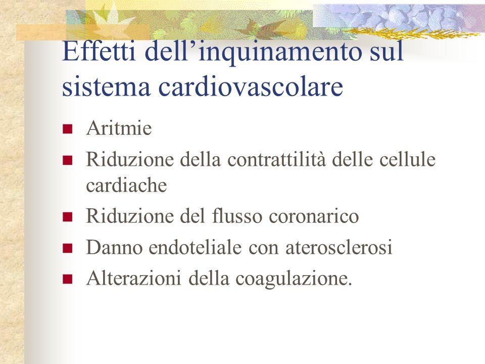 Effetti dell'inquinamento sul sistema cardiovascolare