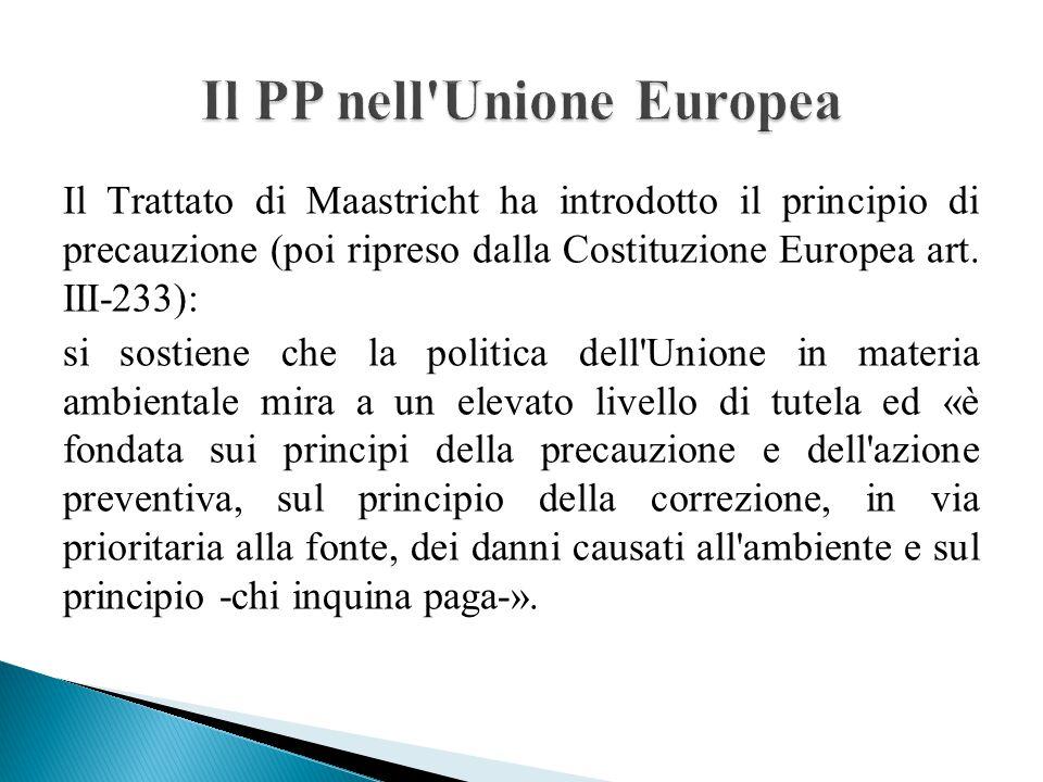 Il PP nell Unione Europea