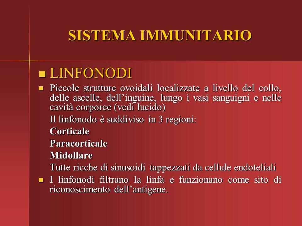 SISTEMA IMMUNITARIO LINFONODI