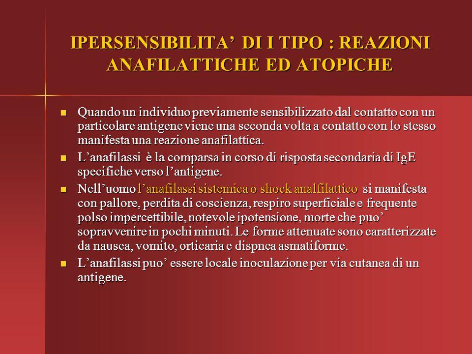 IPERSENSIBILITA' DI I TIPO : REAZIONI ANAFILATTICHE ED ATOPICHE