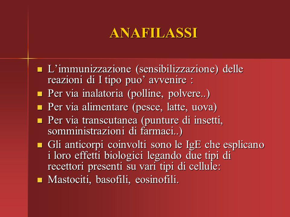 ANAFILASSI L'immunizzazione (sensibilizzazione) delle reazioni di I tipo puo' avvenire : Per via inalatoria (polline, polvere..)