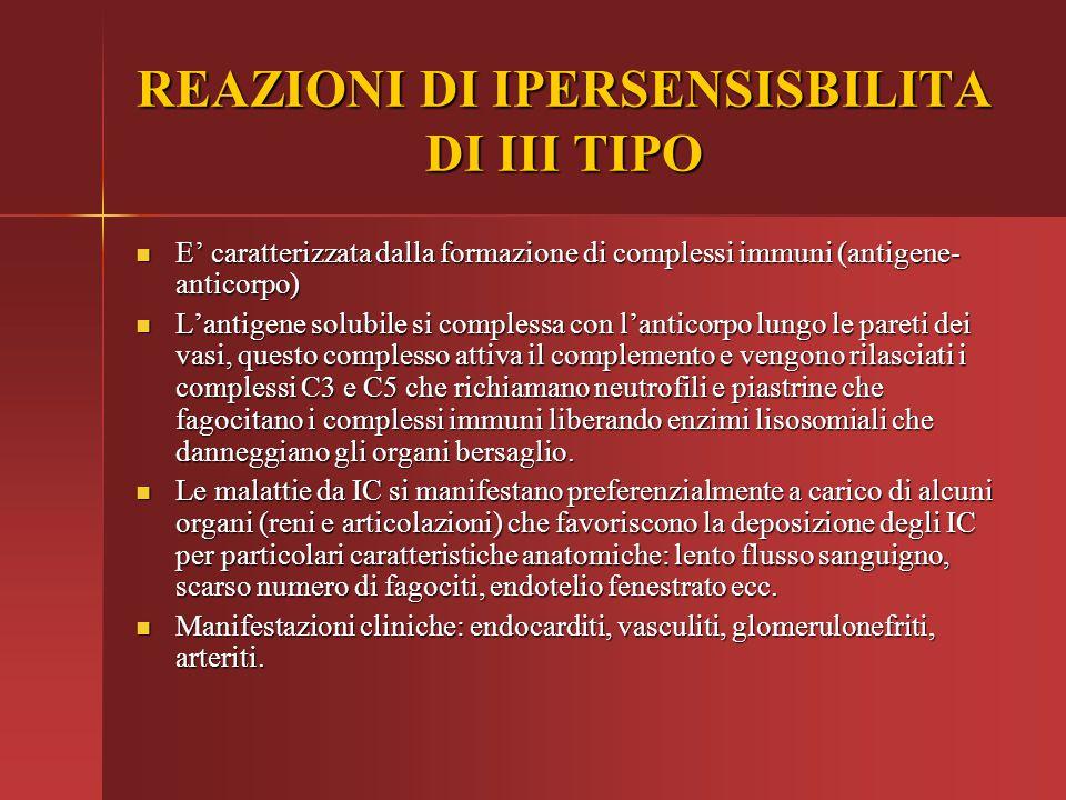 REAZIONI DI IPERSENSISBILITA DI III TIPO