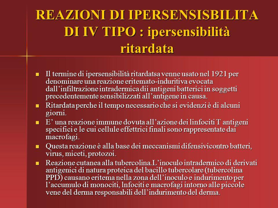 REAZIONI DI IPERSENSISBILITA DI IV TIPO : ipersensibilità ritardata