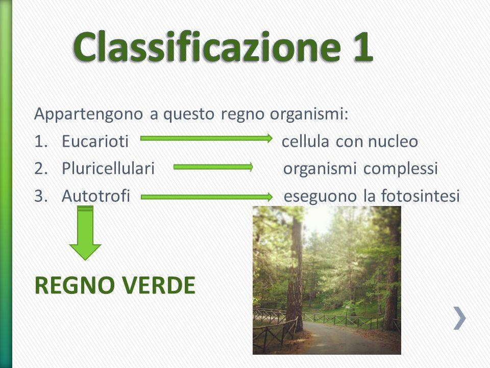 Classificazione 1 REGNO VERDE Appartengono a questo regno organismi: