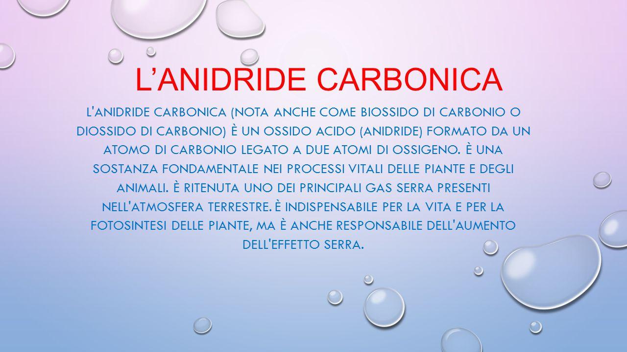 L'anidride Carbonica