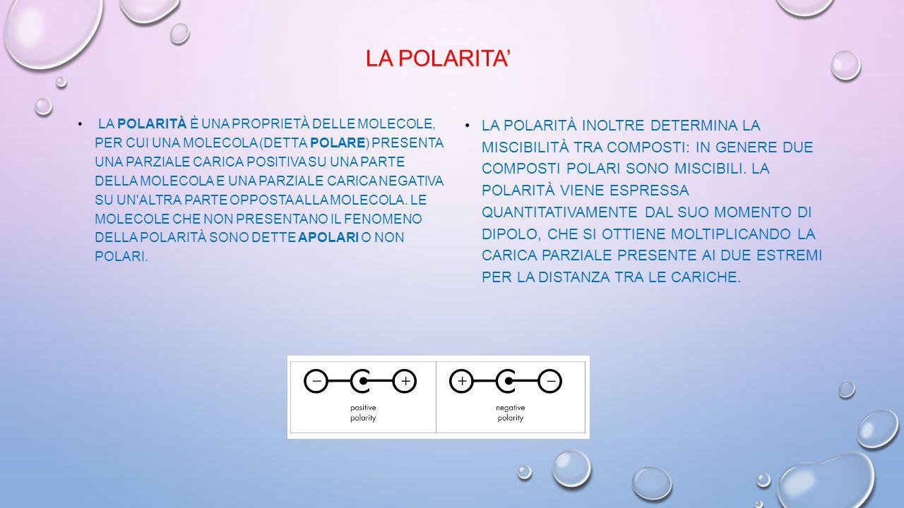 La Polarita'