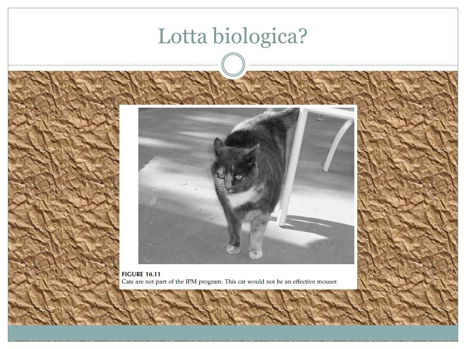 Lotta biologica