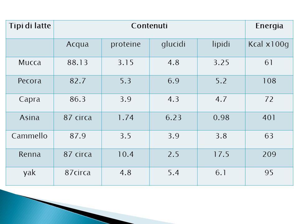 Tipi di latte Contenuti. Energia. Acqua. proteine. glucidi. lipidi. Kcal x100g. Mucca. 88.13.