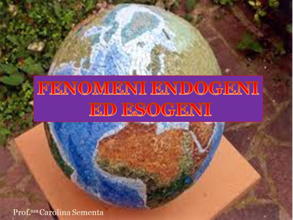 FENOMENI ENDOGENI ED ESOGENI