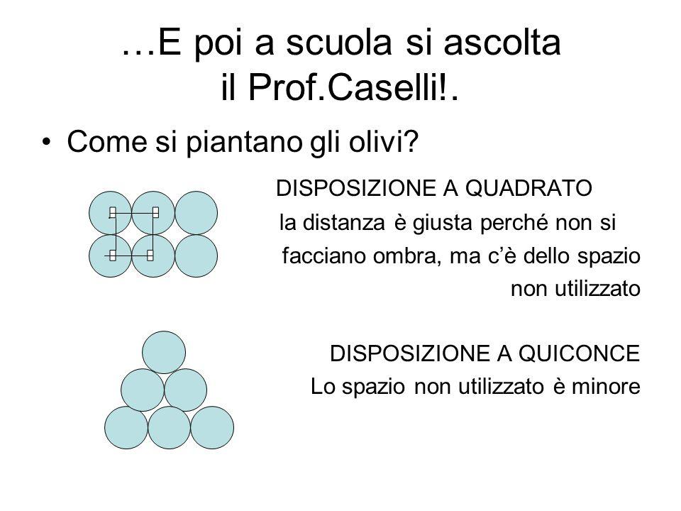 …E poi a scuola si ascolta il Prof.Caselli!.
