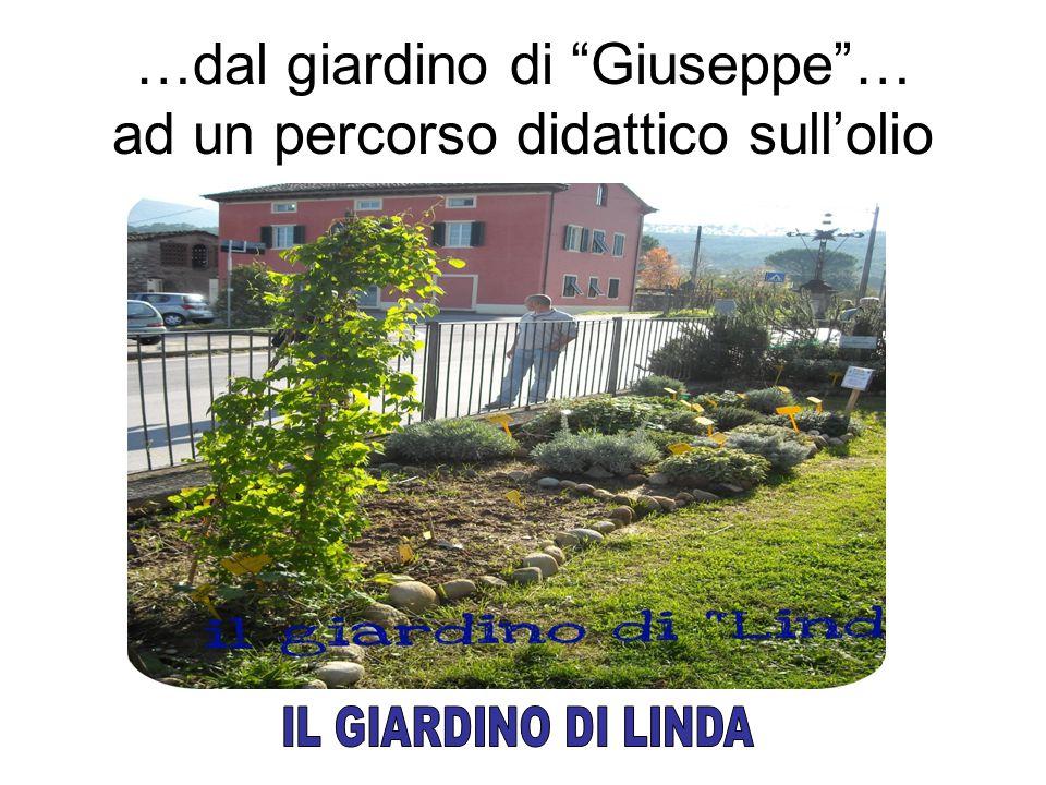 …dal giardino di Giuseppe … ad un percorso didattico sull'olio