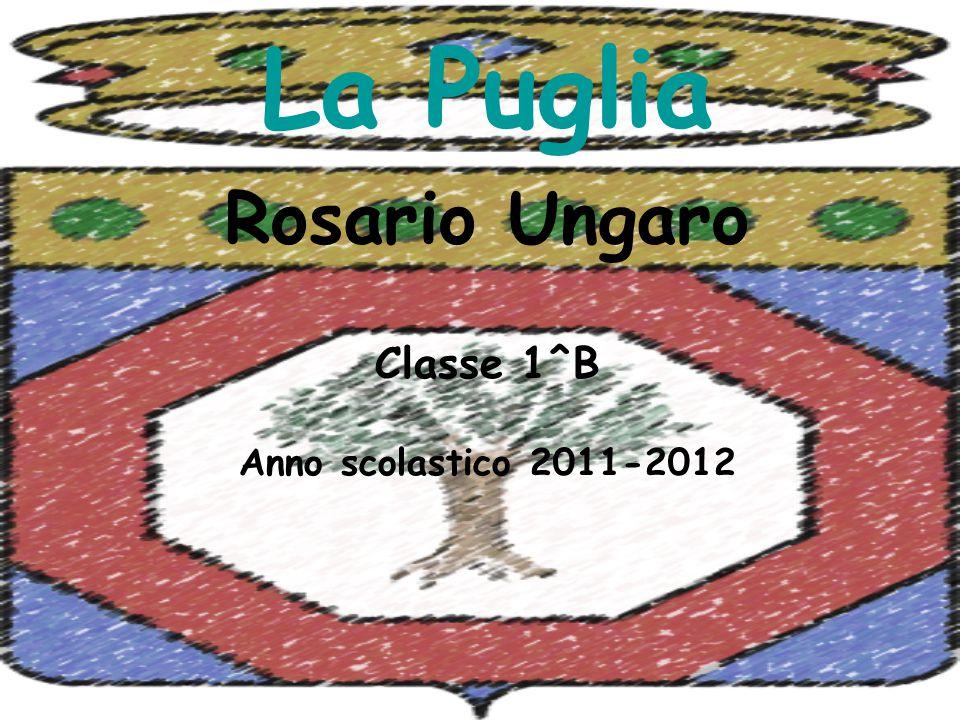 Rosario Ungaro Classe 1^B Anno scolastico 2011-2012