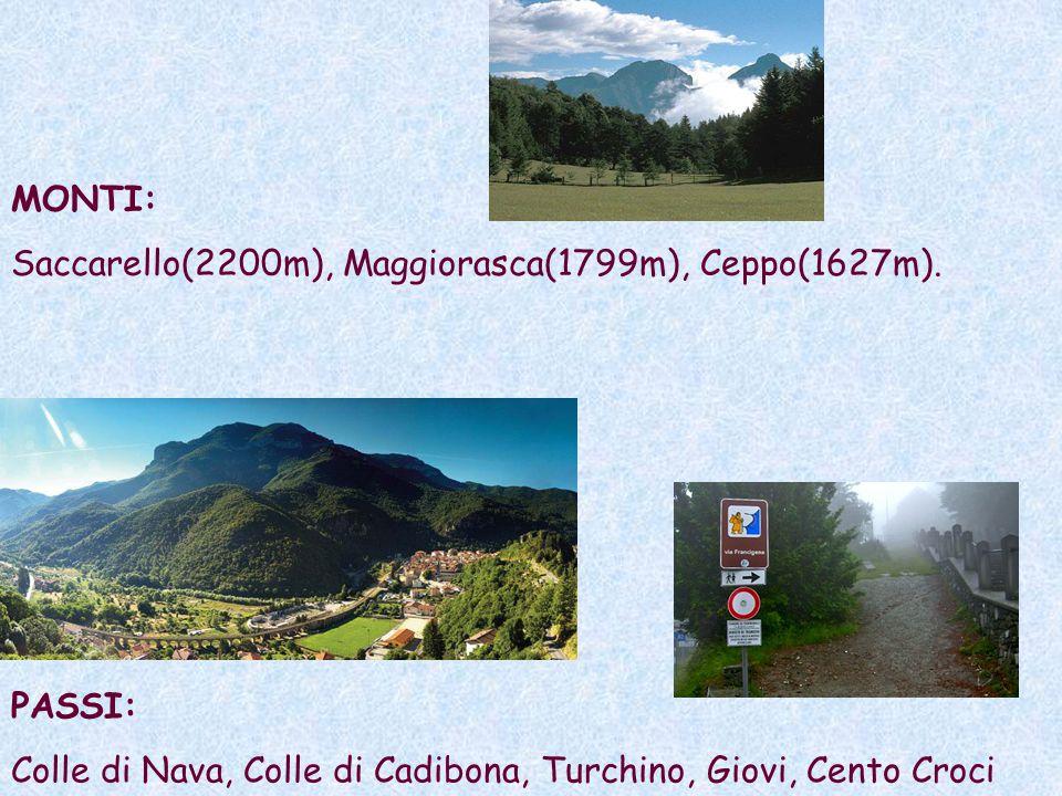 MONTI: Saccarello(2200m), Maggiorasca(1799m), Ceppo(1627m).