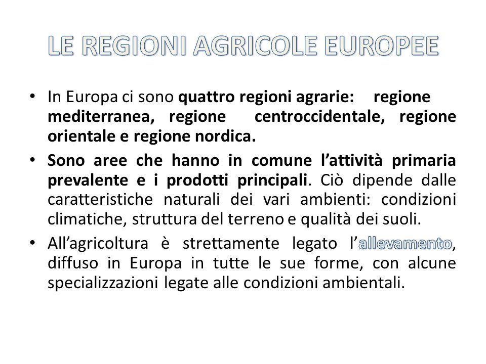 LE REGIONI AGRICOLE EUROPEE