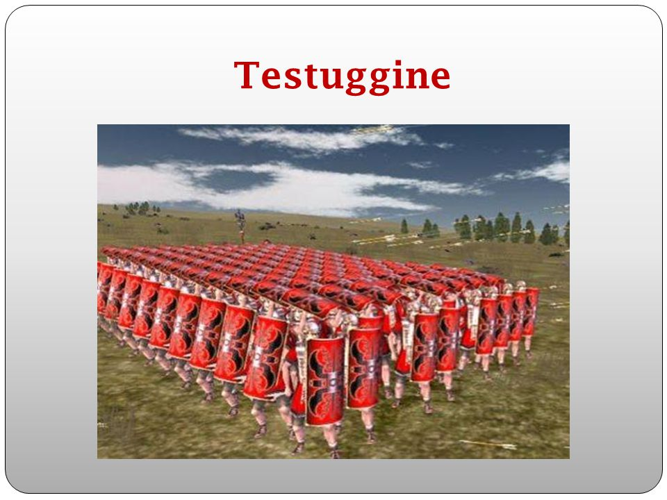 Testuggine