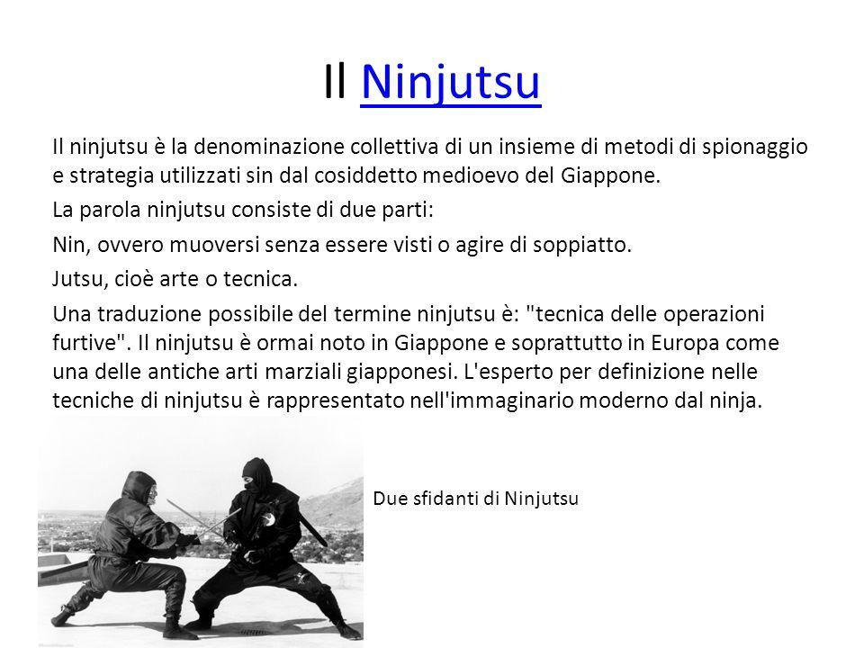 Il Ninjutsu