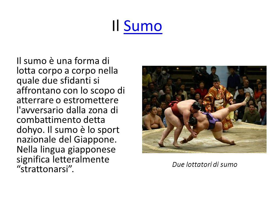 Il Sumo