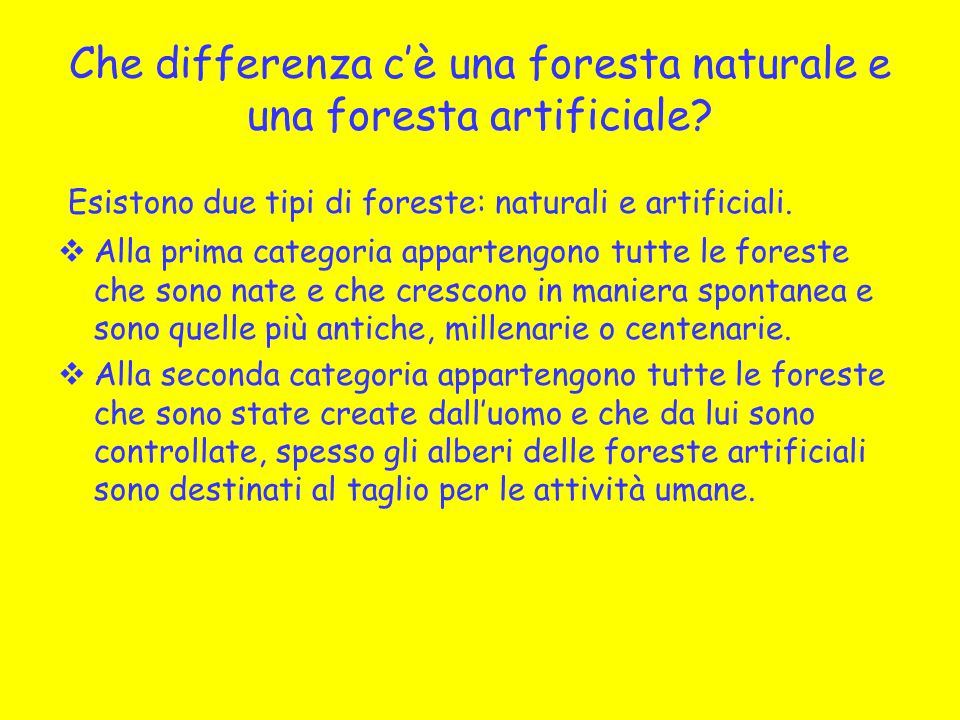 Che differenza c'è una foresta naturale e una foresta artificiale