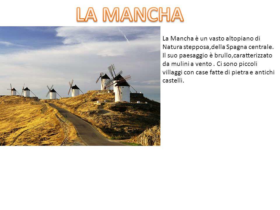 LA MANCHA La Mancha è un vasto altopiano di
