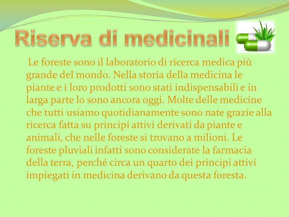 Riserva di medicinali