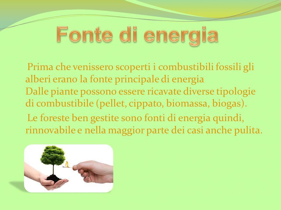 Fonte di energia