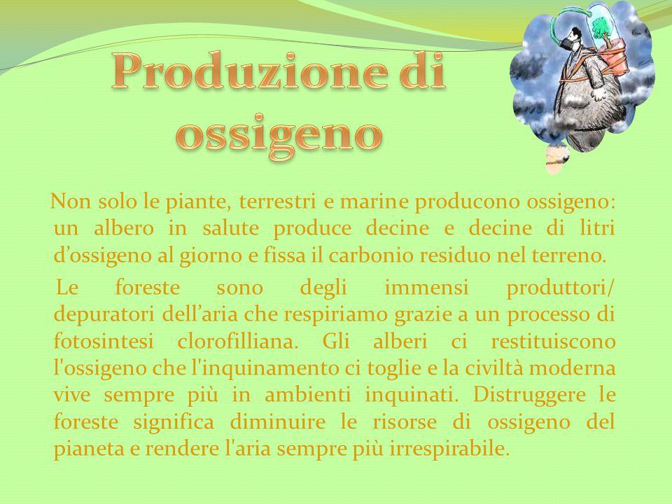Produzione di ossigeno