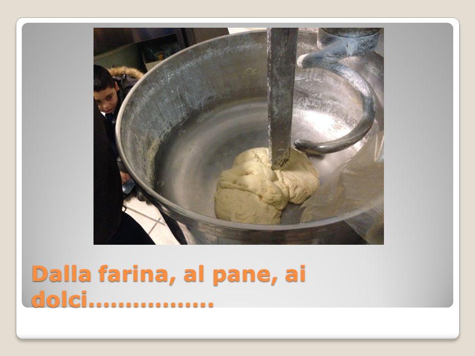Dalla farina, al pane, ai dolci……………..