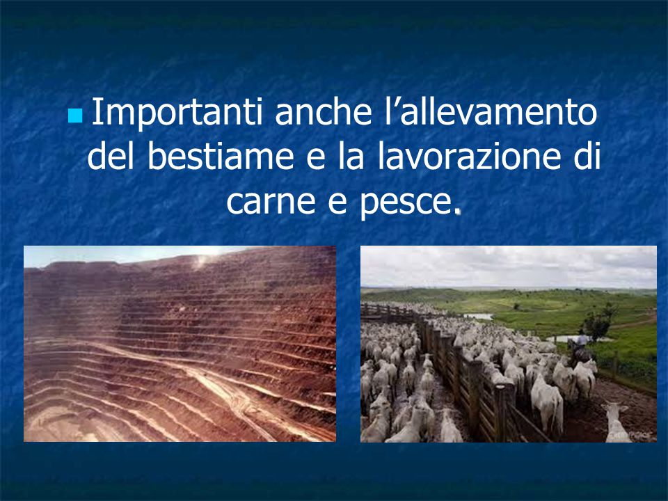 Importanti anche l'allevamento del bestiame e la lavorazione di carne e pesce.