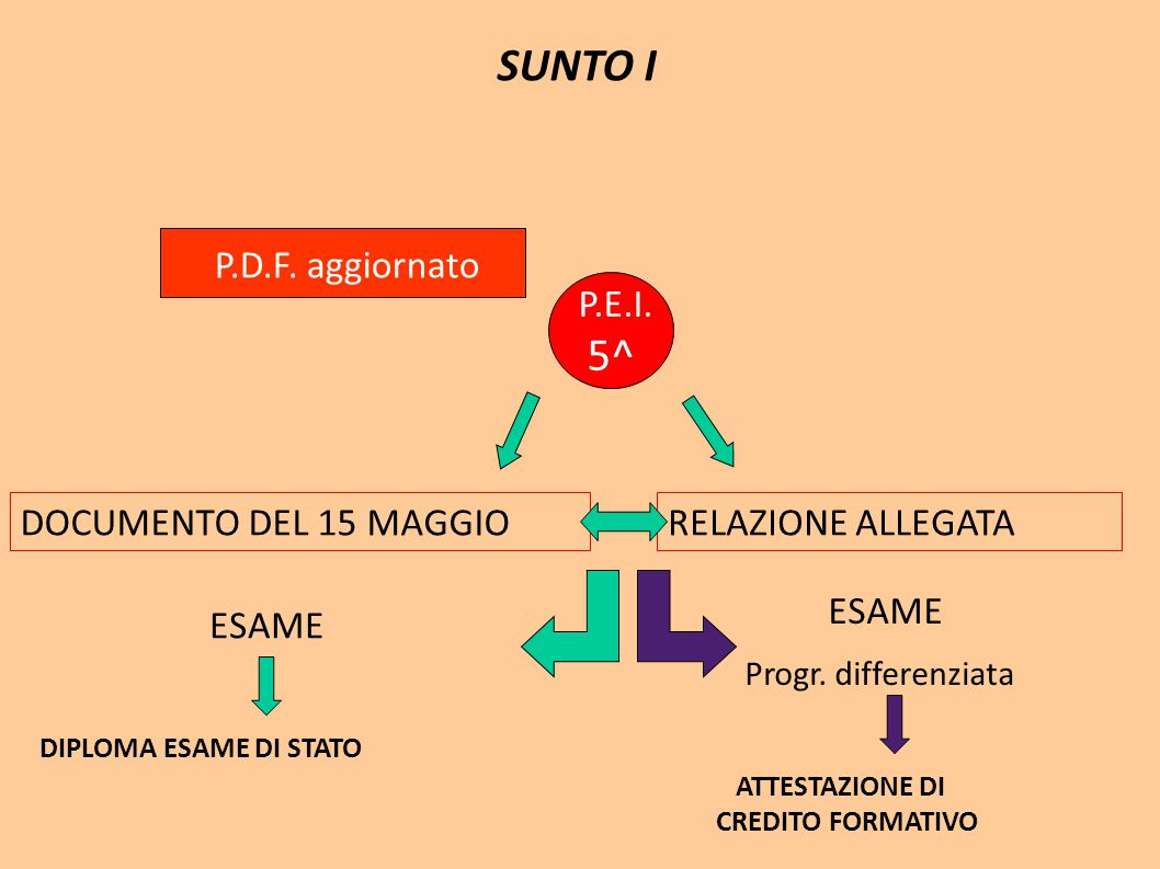 SUNTO I P.D.F. aggiornato P.E.I. 5^ DOCUMENTO DEL 15 MAGGIO