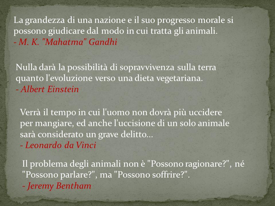 La grandezza di una nazione e il suo progresso morale si possono giudicare dal modo in cui tratta gli animali. - M. K. Mahatma Gandhi