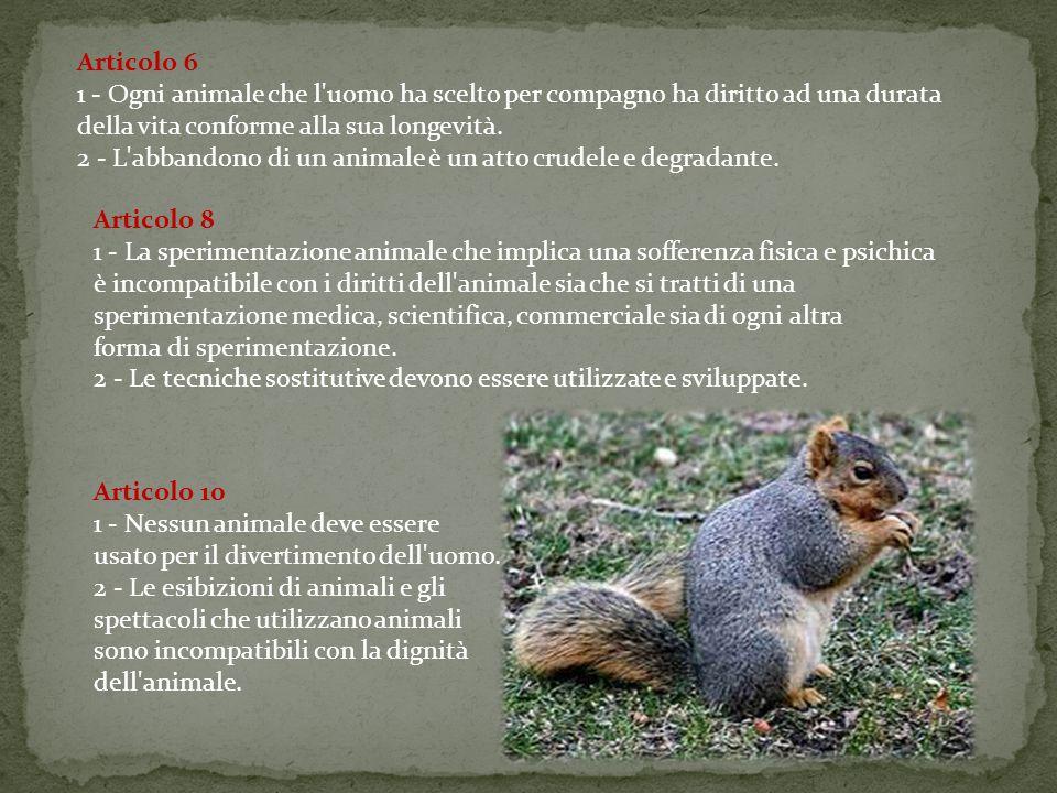 Articolo 6 1 - Ogni animale che l uomo ha scelto per compagno ha diritto ad una durata della vita conforme alla sua longevità.